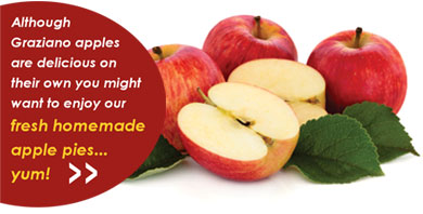 Although Graziano apples are delicious on their own here's an apple pie recipe for you to try!